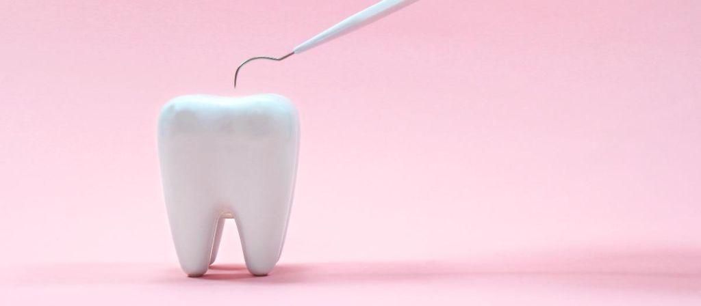 Modell eines gesunden Zahns auf rosa Hintergrund