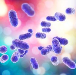 Bakterien Auslöser für Parodontitis