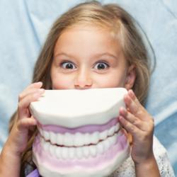 Mädchen hält großes Gebissmodell vor den Mund