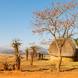 Landschaft in Swasiland